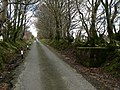 Straight Road - geograph.org.uk - 156315.jpg