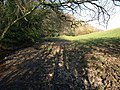 Stream and muddy field edge - geograph.org.uk - 700548.jpg