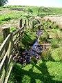 Stream near Ruddenleys farm - geograph.org.uk - 179910.jpg