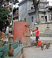 Swayambhunath (21554250522).jpg