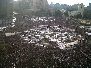 "SpongeBob SquarePants - After the Egyptian Revolution of 2011, SpongeBob became a fashion trend at the Tahrir Square (pictured) and led to the creation of a Tumblr project called ""SpongeBob on the Nile""."