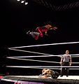 Tamina Flies.jpg