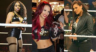 Team B.A.D. Professional wrestling stable