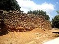 Tel Dan wall.jpg