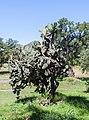 Teotihuacán, México, 2013-10-13, DD 73.JPG