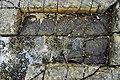 Tessellated Pavement 18.jpg