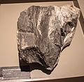 Textural zone 2 schist, containing quartz, Otago Museum.jpg