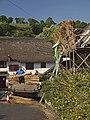 Thatching at Stokeinteignhead - geograph.org.uk - 907977.jpg
