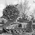 The British Army in Italy 1945 NA23796.jpg