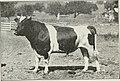 The Cuba review (1907-1931) (20183768843).jpg