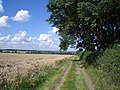 The Public Footpath to Bozeat - geograph.org.uk - 519246.jpg