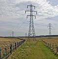 The Pylon on the Path - geograph.org.uk - 777725.jpg