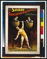 The Sandow Trocadero Vaudevilles, Sandow lifting the human dumbell, 1894 - Original.tif