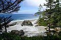 The West Coast Trail Near Nitinat Lake.jpg