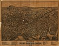 The city of New Haven, Conn. 1879..jpg