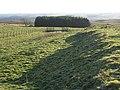 The eastern ramparts of Brocolitia - geograph.org.uk - 1104330.jpg