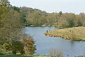 The lake at Winkworth Arboretum - geograph.org.uk - 569897.jpg