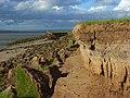 The tidal Eden, Burgh Marsh - geograph.org.uk - 858723.jpg