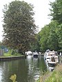 The upstream approach to Caversham Lock - geograph.org.uk - 952079.jpg