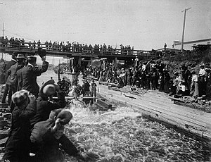 Chaudière Falls - The Royal party running the Chaudière timber slide on a timber crib, September 1901