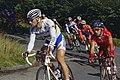 Tom Boonen world champion.jpg