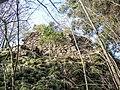 Tour sud du château du Rosemont.jpg