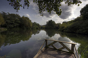 Trafford Park - What remains of Trafford Park's boating lake, now the Trafford Ecology Park