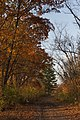 Trail to Friendship Park 1.jpg