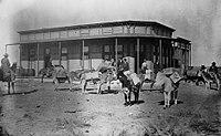 Train of packhorses in Arkalon, Kansas (circa 1880-1889).jpg