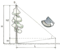 Tree height measuring-1.png