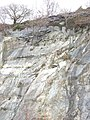 Trees clinging to the edge of the north face of the upper pit of Lower Glynrhonwy Quarry - geograph.org.uk - 336416.jpg