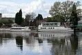 Trent cruise boats - geograph.org.uk - 785244.jpg