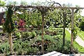 Tuin Natuurmuseum Twintighoeven P1480078.jpg