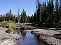 Tuolumne River in meadows.jpg