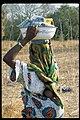 UNCDF Senegal (30467443982).jpg