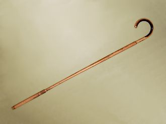Walking stick - A walking stick