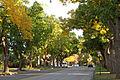 University Boulevard Denver.JPG