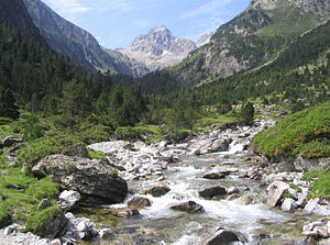 Lutour valley, Pyrenees.