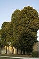 Vaux-le-Vicomte, château-PM 37377.jpg