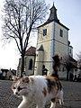 Velhartice, kostel Narození P. Marie.jpg