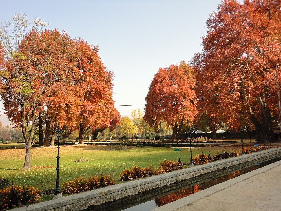 Verinag Garden in Autumn