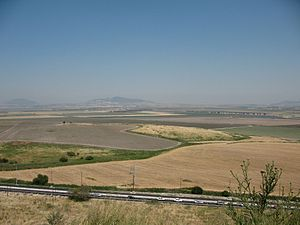 Via Maris - Jezreel Valley with Via Maris in foreground