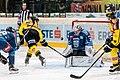 Vienna Capitals vs Fehervar AV19 -180.jpg