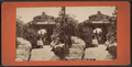 View in Central Park, N.Y, from Robert N. Dennis collection of stereoscopic views 4.png