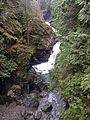 View of South Fork Snoqualmie River near Twin Falls.jpg