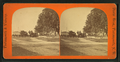View of a residential street, by Davis Brothers.png
