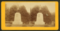 View of the Reynold's statue, from Robert N. Dennis collection of stereoscopic views.png