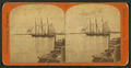 View on the St. John's River, from Robert N. Dennis collection of stereoscopic views.png