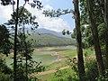 Views around Munnar, Kerala (62).jpg