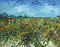 Vincent Van Gogh - The Green Vineyard (1888).jpg